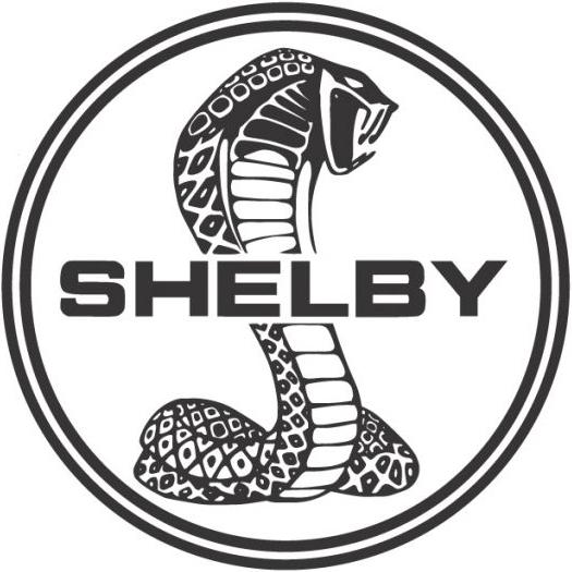 Black And White Ford: SHELBY HISTORIA